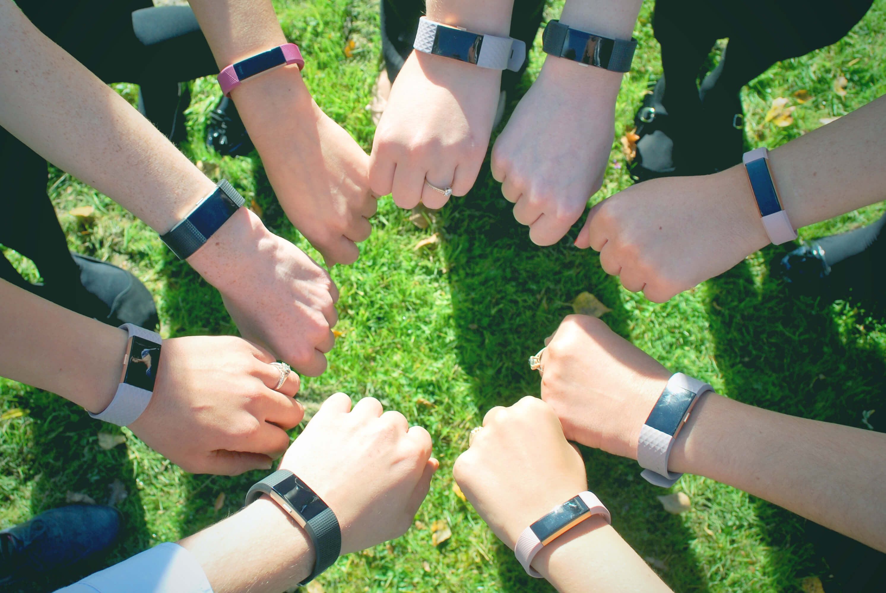 Onecom staff step up as company launches Fitbit fitness drive