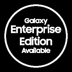 Enterprise Edition stamp