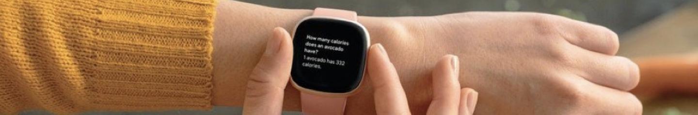 Fitbit Versa Lifestyle